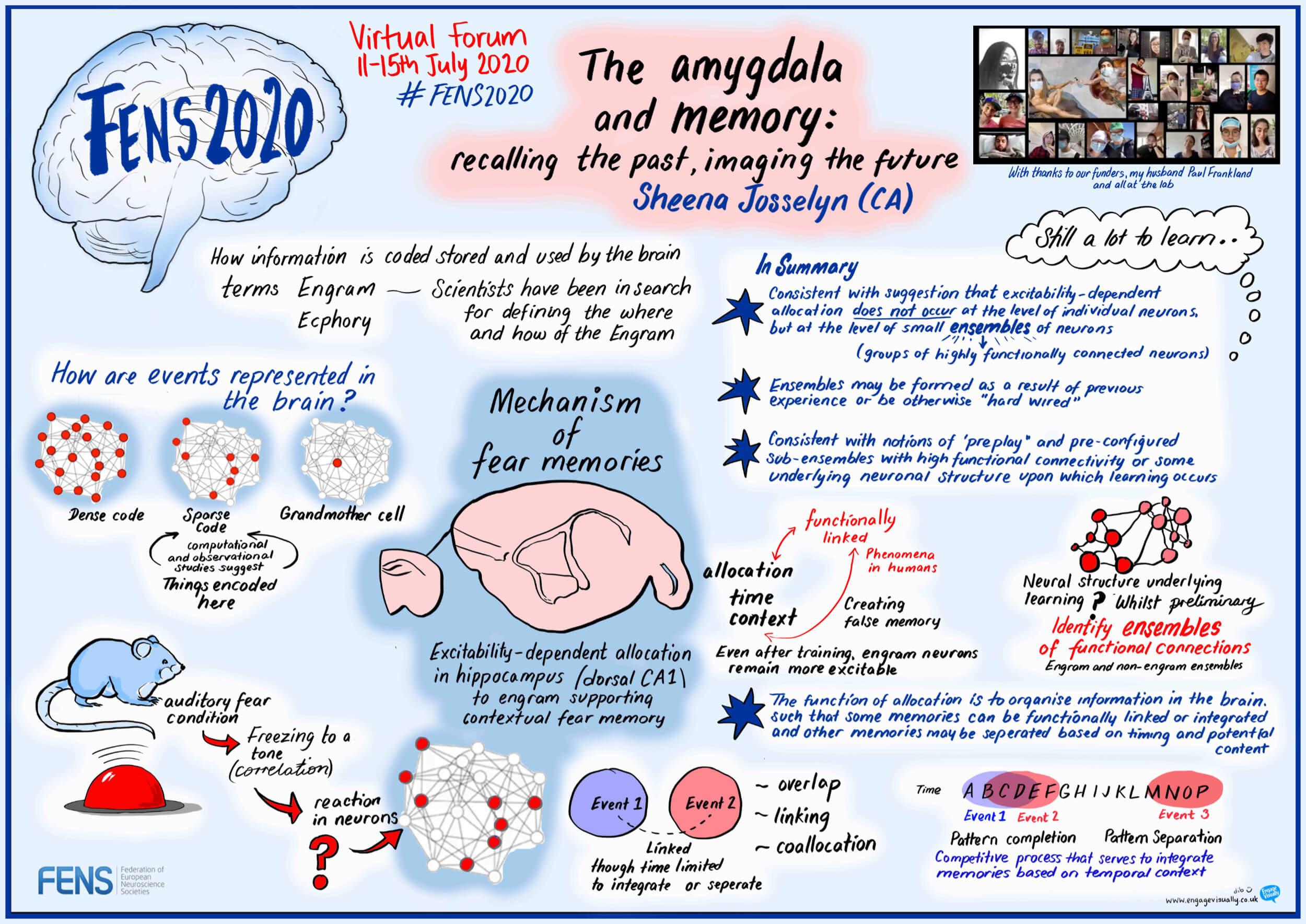 """The amygdala and memory: recalling the past, imaging the future"" Sheena Josselyn (CA)"
