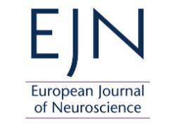 EJN logo image