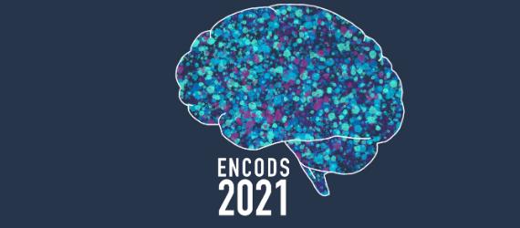 ENCODS 2021 landscape