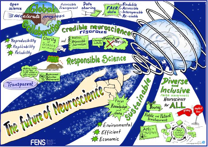 Ideas for the future of neuroscience
